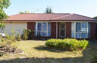 Picture of 16 Nardoo Court, Thurgoona NSW 2640