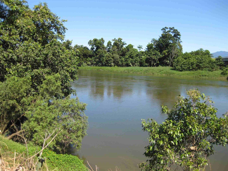 Silky Oak QLD 4854, Image 1