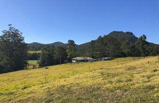 Picture of 1821 Comboyne Road, Killabakh NSW 2429