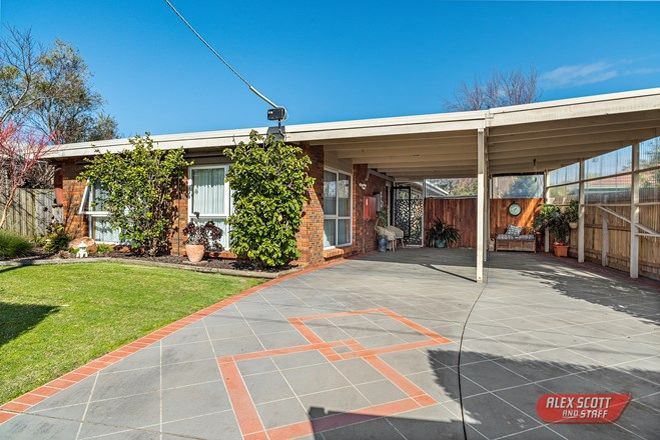 Picture of 24 Malcliff Road, NEWHAVEN VIC 3925