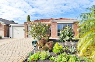 Picture of 34 Parkway Cct, Parafield Gardens SA 5107