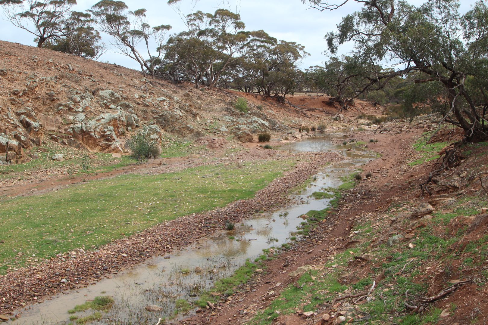 Lot 401 Section 401, North Hills Road, Dutton SA 5356, Image 0