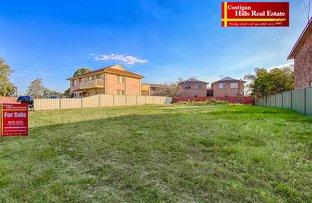 36 Harris Street, Windsor NSW 2756