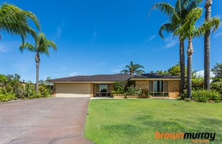 Picture of 17 Conquest Court, Thornlie WA 6108