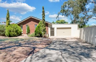 Picture of 11 Radiata Grove, Salisbury Heights SA 5109