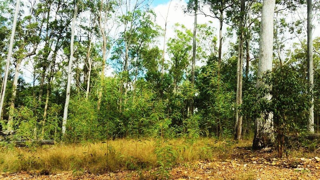 Lot 741 Neerdie Road, Glenwood QLD 4570, Image 0