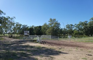 Picture of Goondiwindi QLD 4390