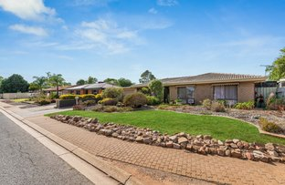 Picture of 47 Carabeen Crescent, Andrews Farm SA 5114