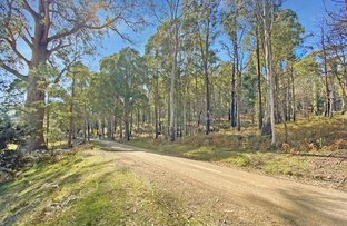 Picture of Lot 5 Gardiners Creek Road, St Marys TAS 7215