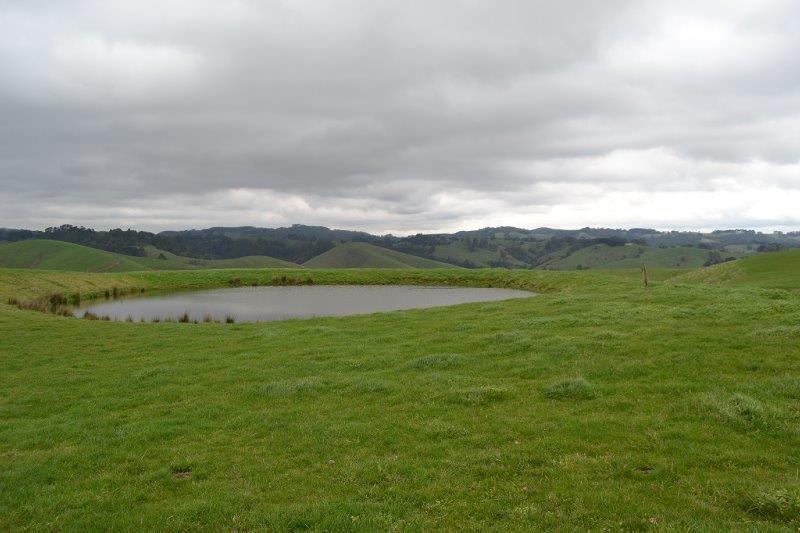 90 Grand Ridge Rd, Seaview VIC 3821, Image 0
