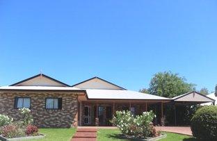 Picture of 7 Paul Bradley Drive, Goondiwindi QLD 4390