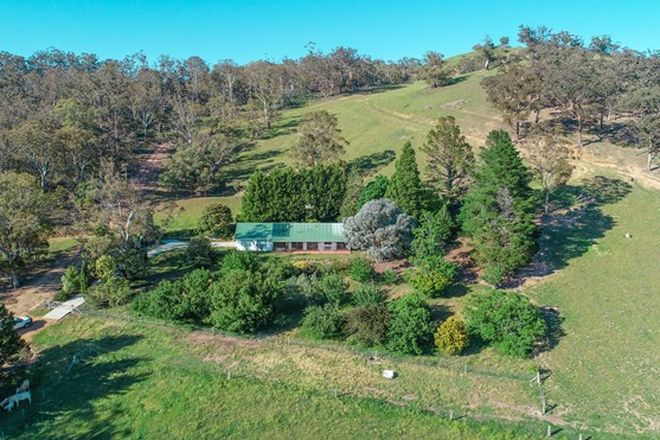 Picture of 818 Marsden Swamp Road, GANBENANG NSW 2790