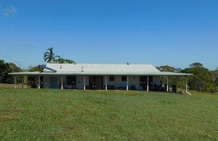 Picture of 77 Fenech Avenue, Alligator Creek QLD 4740