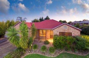 11 Adams Court, Thurgoona NSW 2640