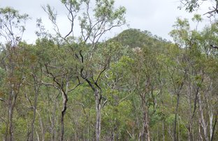 Picture of Dimbulah QLD 4872