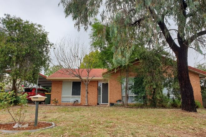 Picture of 113 Raye Street, TOLLAND NSW 2650