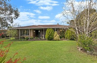 Picture of 584 Hensley Park Road, Hamilton VIC 3300