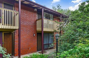13/88 Barton Terrace, North Adelaide SA 5006