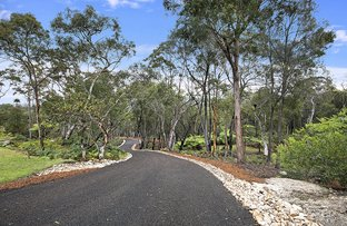 Picture of 147-149 Booralie Road, Duffys Forest NSW 2084