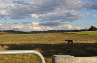 Picture of Lot 1 Bellevue Road, Tenterfield NSW 2372