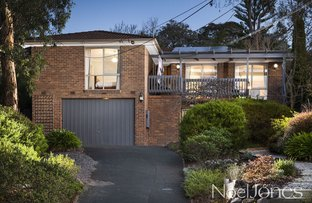 Picture of 33 Felix Crescent, Ringwood North VIC 3134