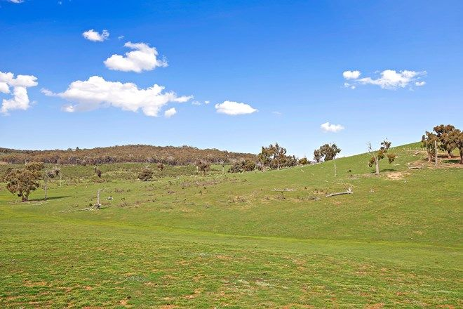 Picture of Lots/176 & 177 Stinkpot Road, GUNNING NSW 2581