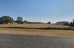Picture of 13 Brampton Street, Temora NSW 2666