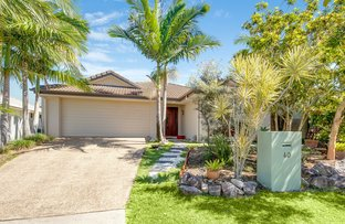 Picture of 40 Riveroak Way, Sippy Downs QLD 4556