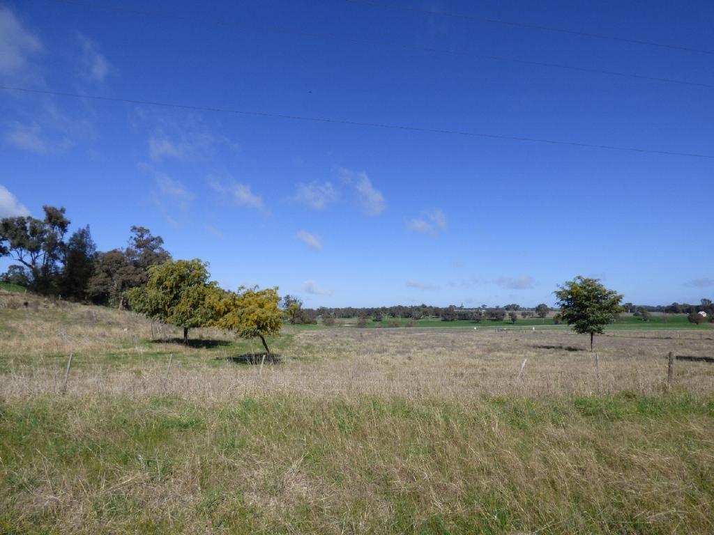 Lot262&263 Burley Griffin Way, Wallendbeen NSW 2588, Image 1