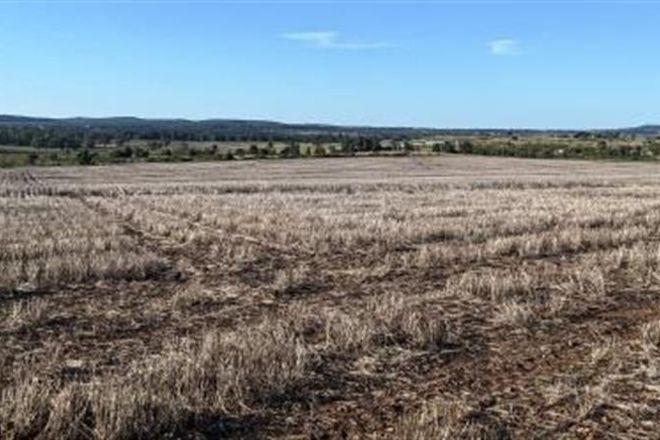 Picture of 16461 Gwydir Highway, GRAVESEND NSW 2401