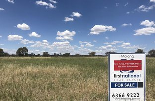 Picture of Lot 48 - 184 Euchareena Road, Molong NSW 2866