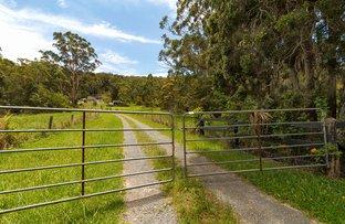 793 Coomba Road, Whoota NSW 2428