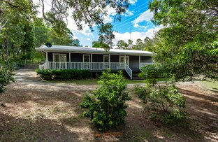 Picture of 2755 Beaudesert Nerang Road, Canungra QLD 4275