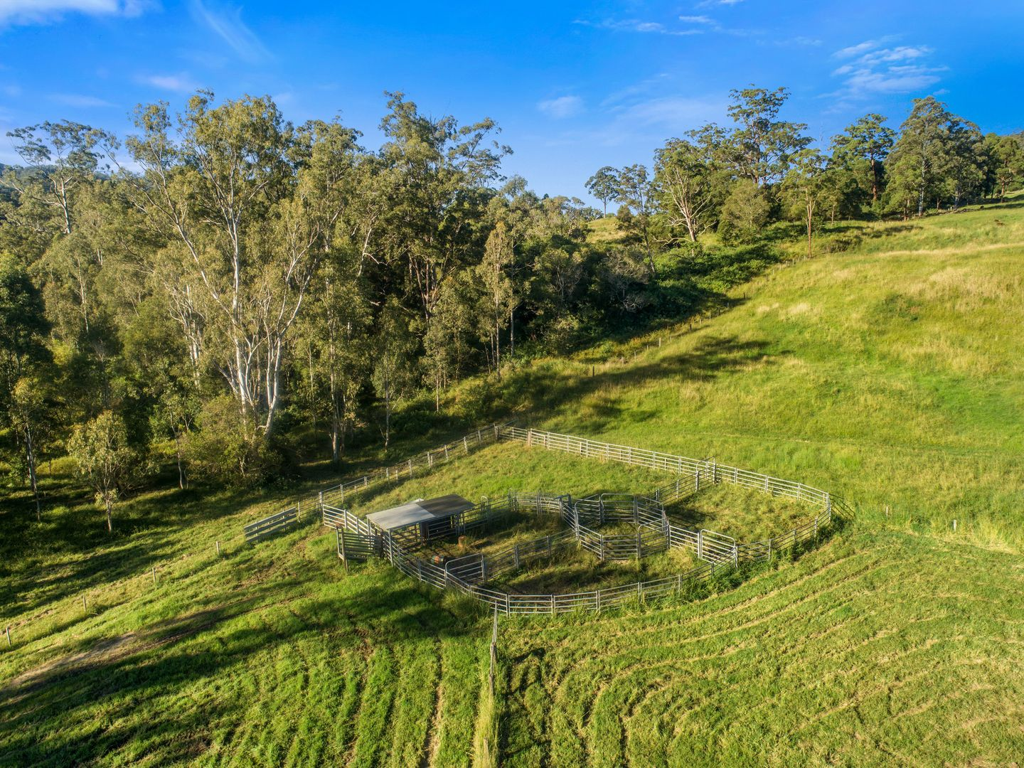 838 WILLIAMS ROAD, Barkers Vale NSW 2474, Image 1