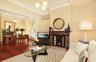 43 Carlisle Street, Ashfield NSW 2131