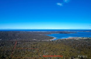 Picture of 697 Binalong Bay Road, St Helens TAS 7216