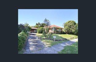 20 wilga street, Mount Waverley VIC 3149