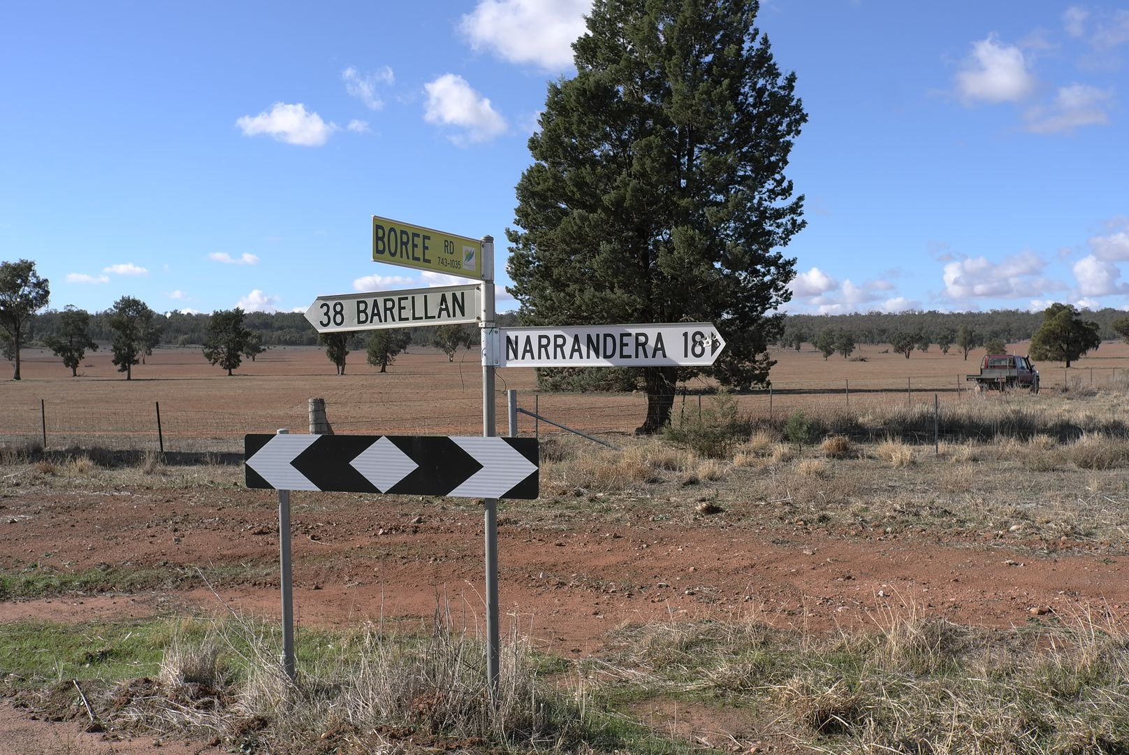Barellan Road, Narrandera NSW 2700, Image 2