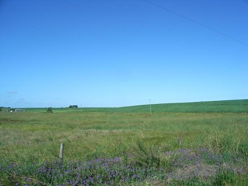 88 Perry Road, Magnolia QLD 4650, Image 2