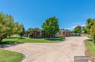 Picture of 55 Milawa-Bobinawarrah Road, Milawa VIC 3678