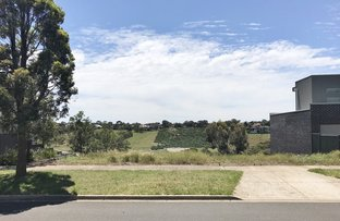 Picture of 18 Rice Flower Road, Sunshine North VIC 3020