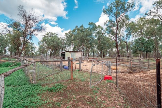 Picture of 298 Glencoe Road, COVERTY QLD 4613