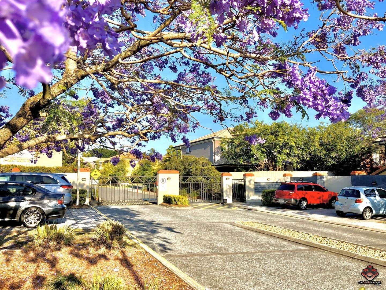 ID:3864469/31 Archipelago Street, Pacific Pines QLD 4211, Image 2