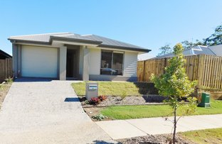 36 Mcpherson Crescent, Coomera QLD 4209