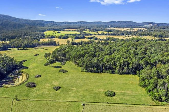 Picture of Lot 51 Randalls Rd, BUCCA NSW 2450