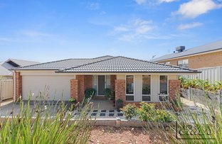 Picture of 14 Irrabella Place, Kangaroo Flat VIC 3555