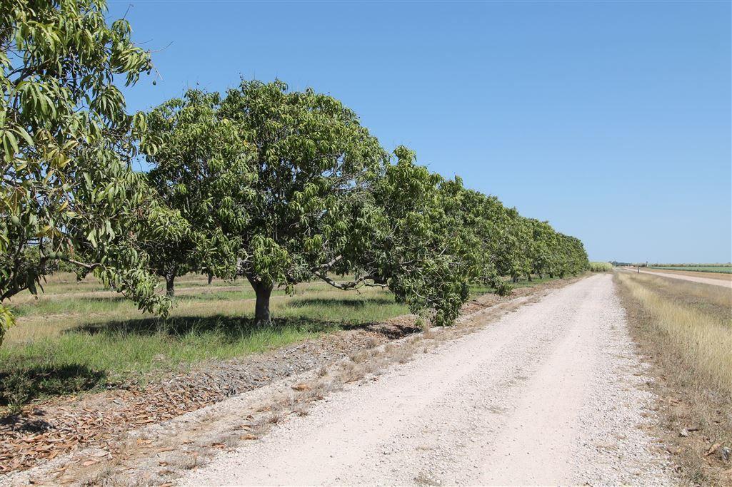32875 Bruce Highway, Giru QLD 4809, Image 1