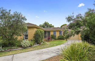 Picture of 6 Corriedale Court, Belmont VIC 3216