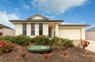 Picture of 12 Belmont Crescent, Mount Barker SA 5251