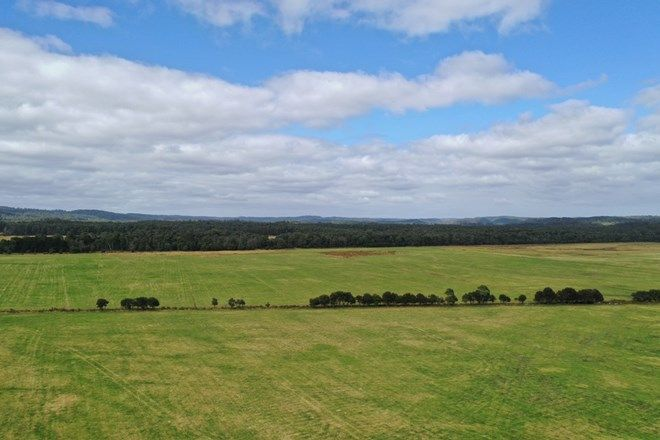 Picture of Donalds Road, ROGER RIVER TAS 7330